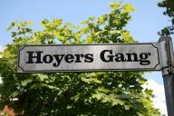 hoyers-gang_0000