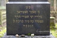 juedischer-friedhof_2900