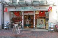 leddin_1000