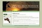 webdesign-oeflag